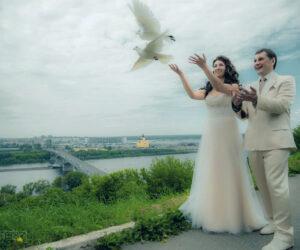 panorama_svadba